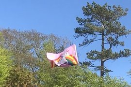 Mahlia spotted a special flag on her walk. Does it belong to Lily?