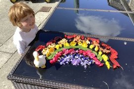 A beautiful rainbow made using flowers from Lily's garden.