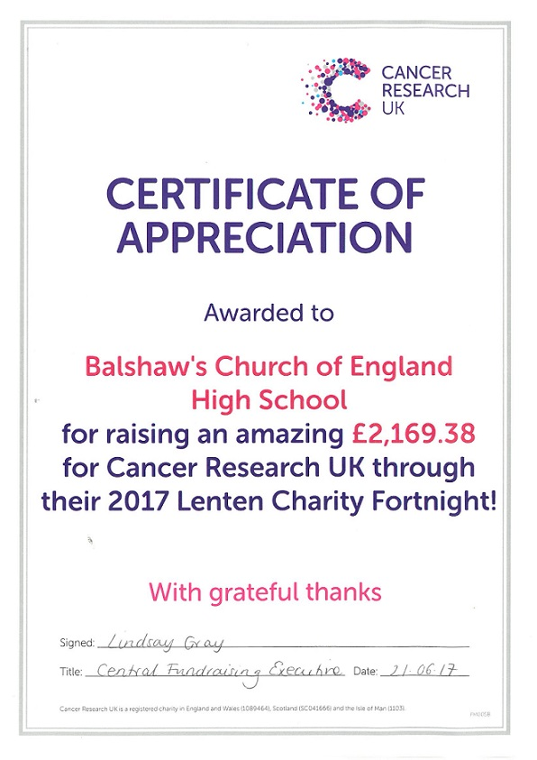 charity work and fundraising