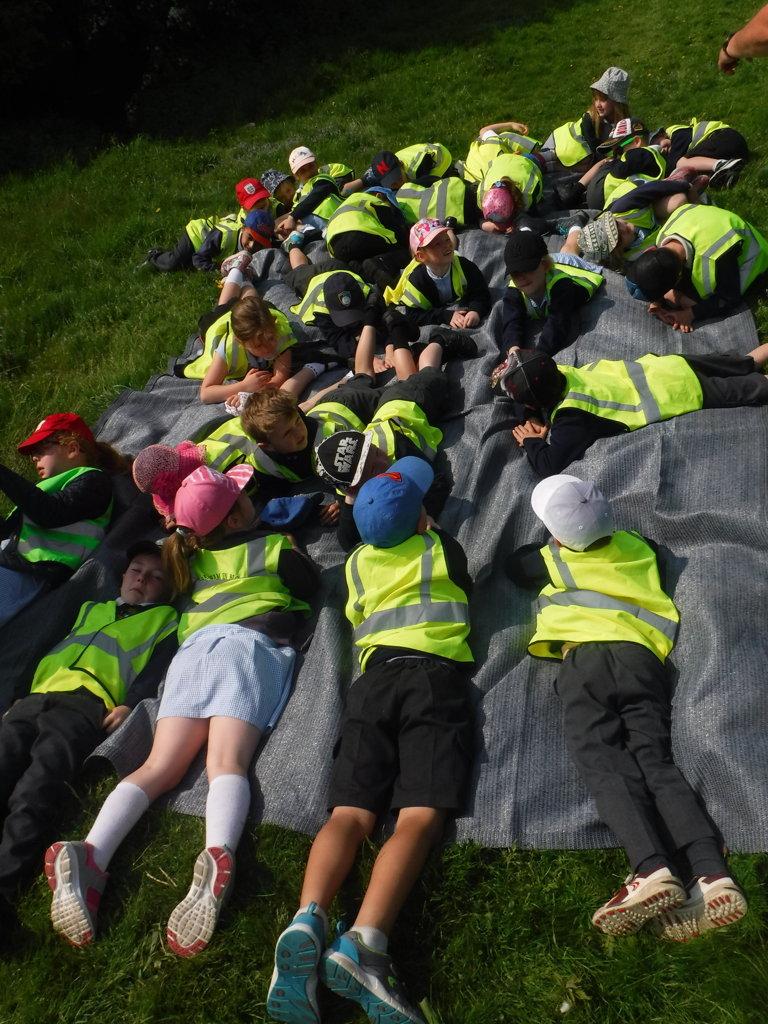 Fairburn Ings | Bramham Primary School