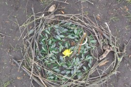 Panther Class created artwork in the style of Andy Goldsworthy.