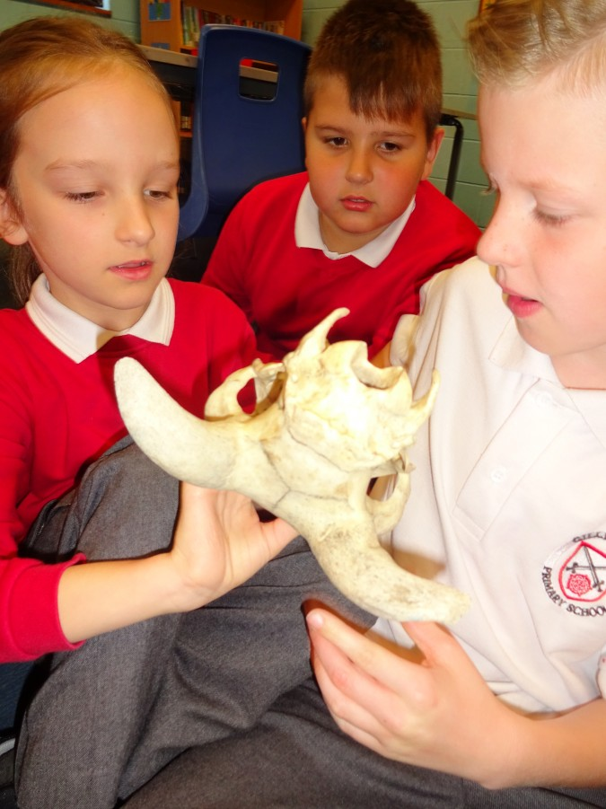 Stone Age artefacts Year 4 | Gillibrand Primary School
