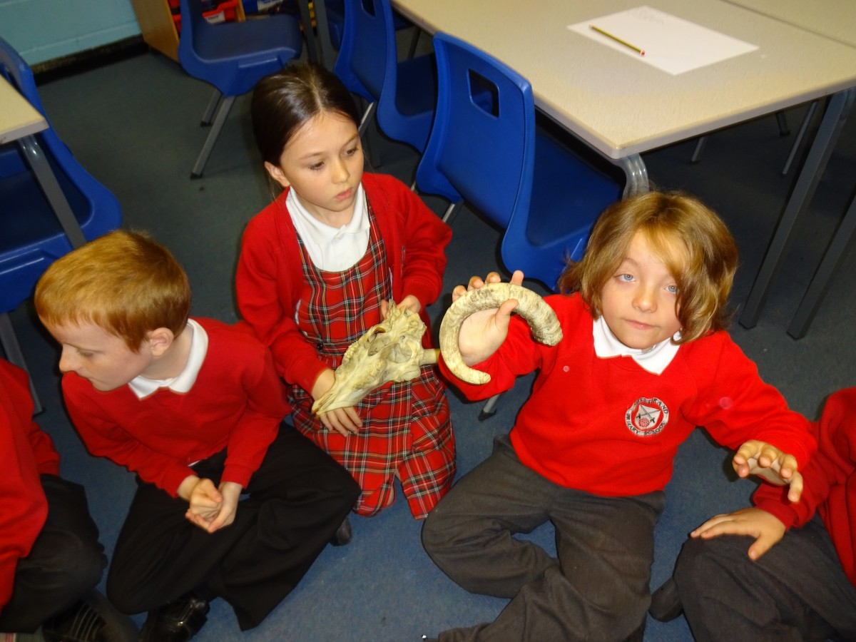 Stone Age artefacts Year 4   Gillibrand Primary School