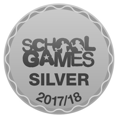 Image result for school games silver 2018