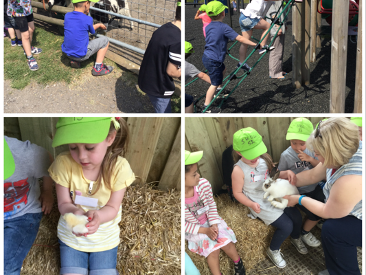 fun on the farm st hugh of lincoln rc primary