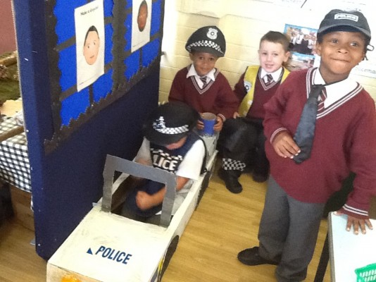 Police and Justice Professionals Roles Essay
