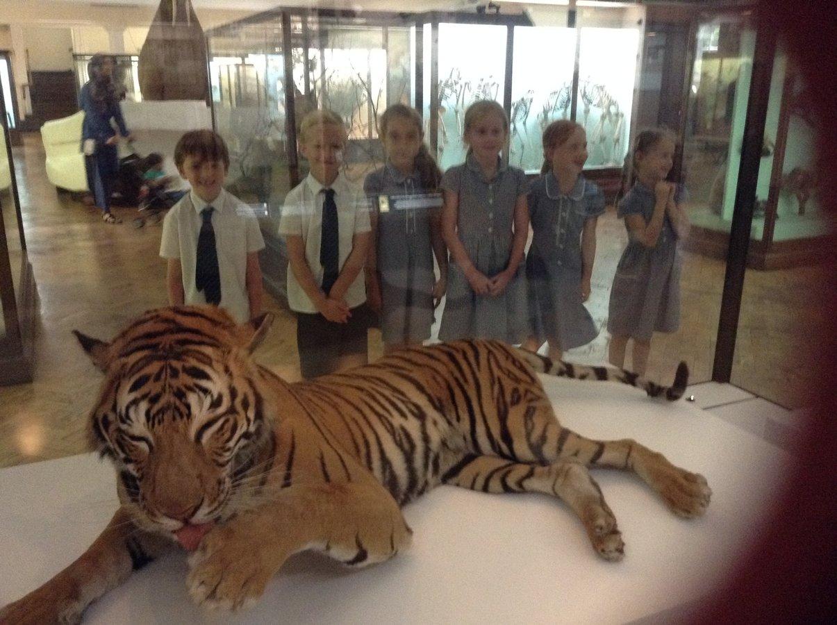 3DH Horniman Museum Trip 05.07.17