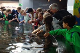 Aquarium - French residential trip 2018